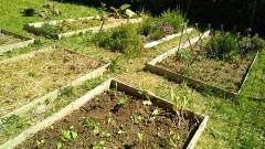le jardin de Jean Moulin